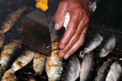Grillade sardiner Arkivbilder