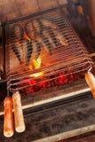 grillade sardines Arkivfoton