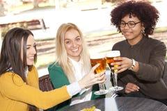 Grillage avec de la bière Photographie stock libre de droits