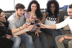 Grillage avec du vin Images libres de droits