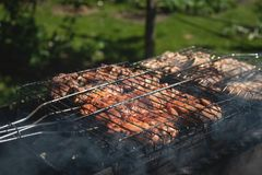 Grillat griskött lagas mat utomhus, sommarpicknicken arkivfoto