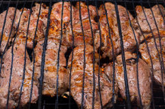 Grillat kött på galler Royaltyfri Fotografi