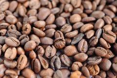 grillat kaffe Royaltyfri Bild