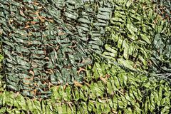 Grille dense de camouflage de couleur verte Photo stock
