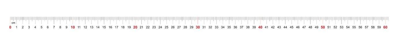 Grille pour une règle de 600 millimètres, 60 centimètres Grille de calibrage Division de valeur 1 millimètre