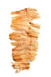 Grilled высушило кальмара Стоковое фото RF