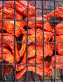 Grilled achiote sauce tikinchik Mayan Royalty Free Stock Photo