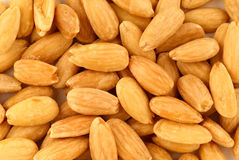 Grilled almonds Stock Image