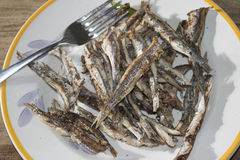 Grilled anchovies Royalty Free Stock Image