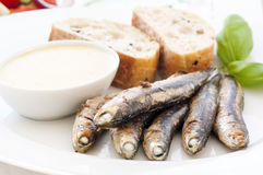 Grilled anchovy. With ailioli and bread Royalty Free Stock Image