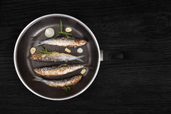 Grilled anchovy fish on pan. Stock Images