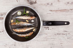 Grilled anchovy fish on pan. Royalty Free Stock Image