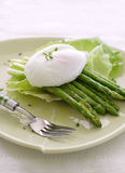 Grilled asparagus with poached egg. Grilled asparagus with a soft-poached egg on a pale green plate Stock Photography