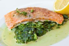 Grilled atlantic salmon fillet Royalty Free Stock Image