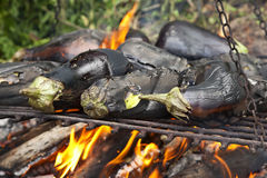 Grilled aubergine. For a tasty stew Royalty Free Stock Photo