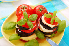 Grilled aubergine with tomato and mozzarella royalty free stock photos