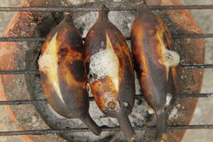 Grilled bananas. Royalty Free Stock Photography