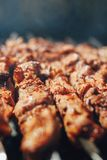 Grilled barbecue meat on skewers with smoke. Closeup view Royalty Free Stock Image
