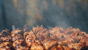 Grilled barbecue meat on skewers with smoke. Closeup view Royalty Free Stock Photography