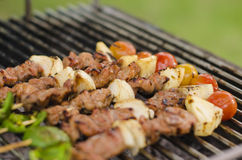 Grilled barbecue Stock Images