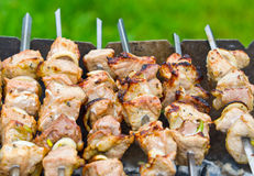 Grilled barbecue in smoke Stock Images