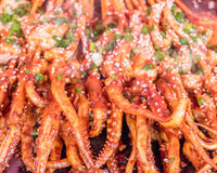 Grilled barbecue squids in street food market. Stock Photo