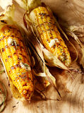 Grilled or barbecued fresh corn on the cob. Served hot with melting butter for a tasty autumn appetizer or snack, high angle view on wood Royalty Free Stock Photos