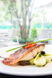 Grilled barramundi steak Royalty Free Stock Images