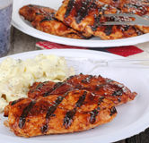 Grilled BBQ Chicken. Breasts on a plate Royalty Free Stock Image