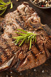 Grilled BBQ T-Bone Steak Stock Photo