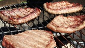 Grilled beef steaks cooking on barbecue grill stock video