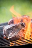 Grilled beef steaks Royalty Free Stock Photos