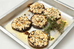 Grilled black mushrooms and feta cheese Royalty Free Stock Photo