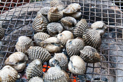 Grilled Blood Clam Royalty Free Stock Images