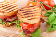 Grilled BLT sandwiches Stock Images