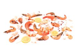 Grilled and boiled shrimp on the table. Royalty Free Stock Photo