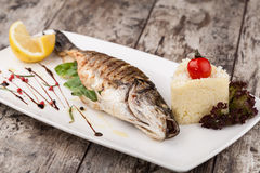 Grilled bream fish Royalty Free Stock Image