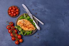 Grilled breas chicken with greenery and tomatoes. Top view with copy space Royalty Free Stock Image