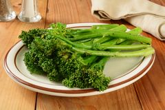 Grilled broccoli spears Royalty Free Stock Photo