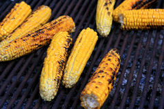 Grilled Burned Corn Stock Photography
