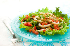 Grilled Calamari Royalty Free Stock Image