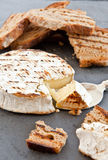 Grilled camembert with bread Stock Images