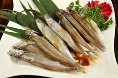 Grilled Capelin Royalty Free Stock Image