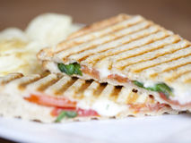 Grilled caprese sandwich Stock Images