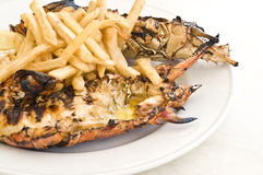 Grilled Caribbean Lobster with Fries Stock Images