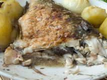 Grilled Carp Stock Images