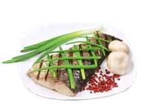 Grilled carp fillet on plate with onion. Royalty Free Stock Image