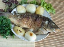 Grilled Carp fish Royalty Free Stock Images