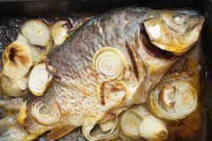 Grilled carp fish  on the cook griddle. Closeup of grilled carp fish  on the cook griddle Royalty Free Stock Photo