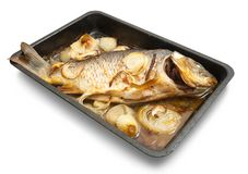 Grilled carp fish  on the cook griddle. Isolated with clipping path Royalty Free Stock Image
